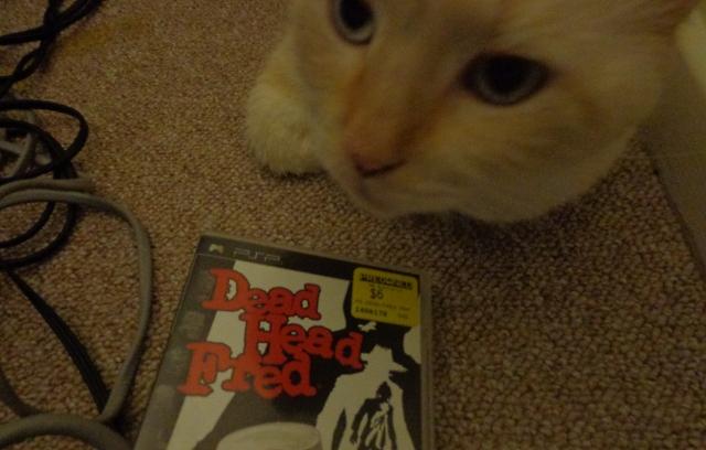 deadheadcat