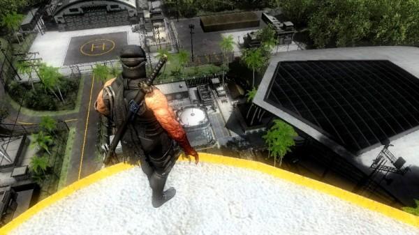 ninjaview